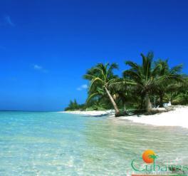 Basics: La Habana y Cayo Levisa
