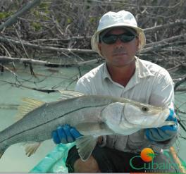Pesca Fly - Ciénaga de Zapata